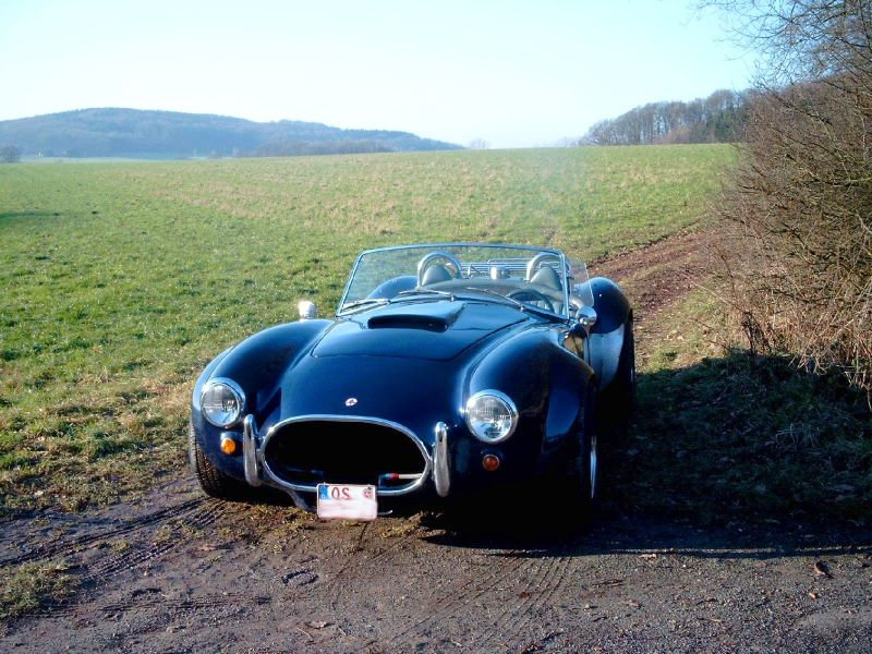 MARTIN´S RANCH Shelby Cobra